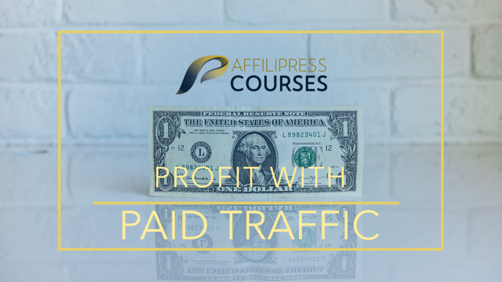 profit with paid traffic